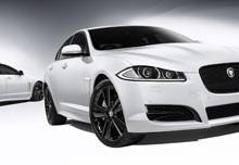 Jaguar NZ